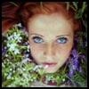http://avatars.atelier801.com/2037/94282037.jpg?1541566821277