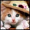 http://avatars.atelier801.com/2219/97622219.jpg?1537156820235