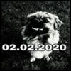 http://avatars.atelier801.com/2603/82482603.jpg?1535428821375
