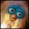 http://avatars.atelier801.com/4079/5354079.jpg