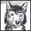 http://avatars.atelier801.com/5360/4185360.jpg?1510462819906