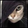 http://avatars.atelier801.com/6316/31526316.jpg?1501300842781