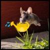 http://avatars.atelier801.com/6853/3626853.jpg